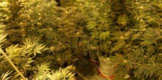 SIPA otkrila laboratoriju za proizvodnju droge u Visokom