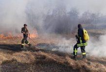 Vatrogasci ugasili požar koji je ugrozio azil s 40-ak napuštenih pasa