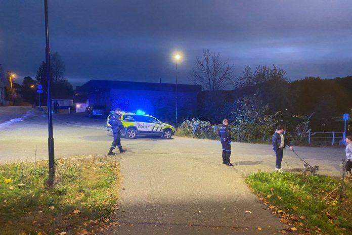U napadu lukom i strijelom u Norveškoj pet mrtvih i dvoje ozlijeđenih